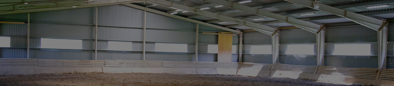 Steel and Metal Buildings for Horse & Riding Arenas